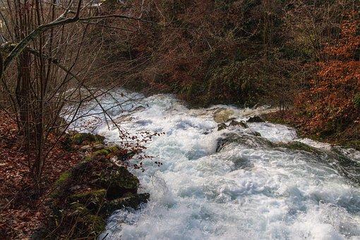 Torrent, Autumn, Watercourse, Murmur, Racing, Nature