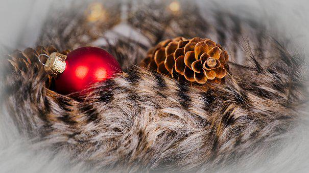 Christmas Card, Fur, Ball, Pine Cones, Greeting Card