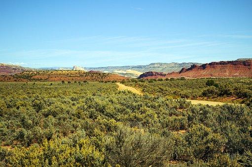 Paria Road, Road, Desert, Grand, Staircase, Escalante