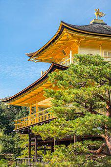 Temple, Pagoda, Roof, Gold, Golden, Tree, High, Big