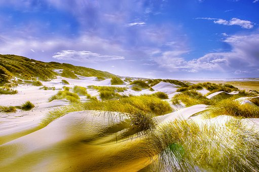 Dunes, Beach, North Sea, Sand, Sea, Vacations, Nature