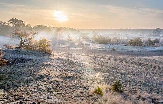 Dunes, Dry, Nature, Sand, Sunrise, Ripe, Winter