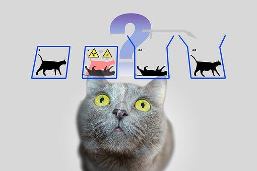 Physics, Schrödinger's Cat, Schrödinger