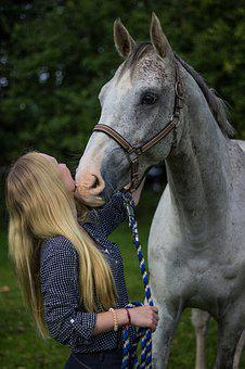 Woman, Young, Standing, Horse, Stallion, White, Girl