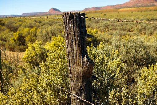 Desert Fence Post, Fence, Barbed, Wire, Barrier, Border