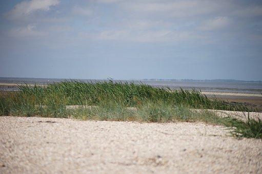 Sea, Dunes, Beach, Coast, Dune, Sand, Nature, Landscape