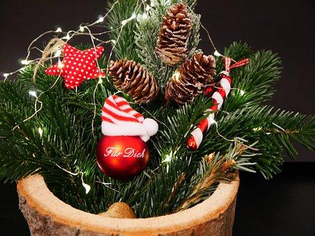 Deco, Christmas Flower Arrangement, Fir Tree, Christmas