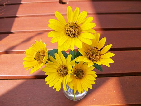 Flowers, Summer, Beauty, Plant, Yellow