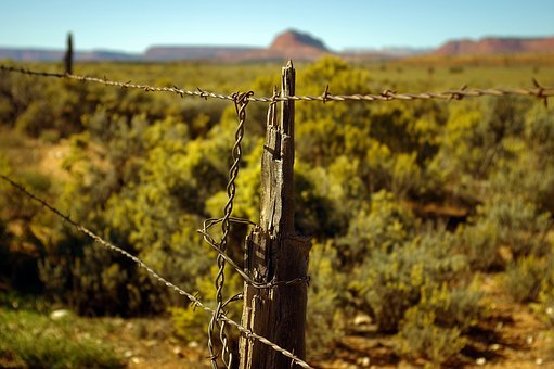 Grand Staircase Escalante Fence, Fence, Barbed, Wire