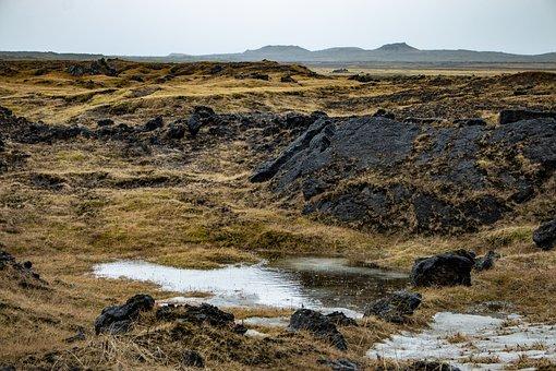 Iceland, Moss, Nature, Landscape, Stones, Rock