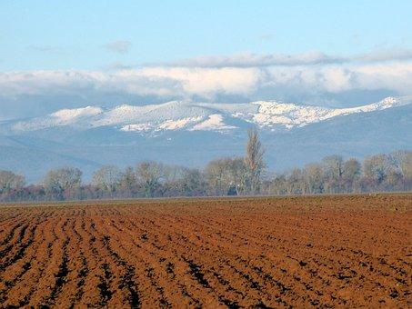 Alsace, France, Plain, Rhine, Sky, Earth, Agriculture