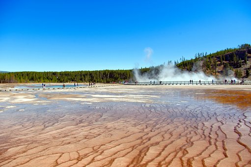 Bacterial Mats At Grand Prismatic, Spring, Hot