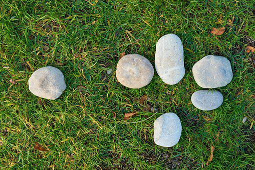 Grass, Stone, Kennedy, Gravel, Texture, Nature, Green