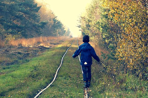 Child, Forest, Rails, Moor, Lonely, Gleise, Threshold