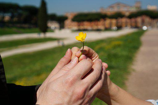 Hand, Flowers, Promise, Women's, Love, People, Yellow