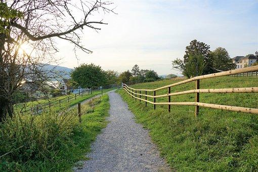 Park, Garden, Zollikon, Zurich, Switzerland, Away, Hike