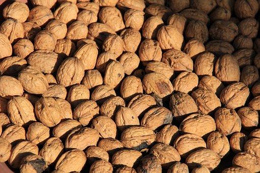Tree Nuts, Quantitative, Nuts, Many, Brown, Still Life