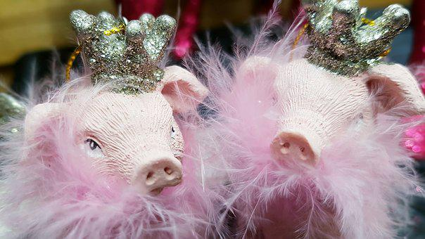 Pig, Crown, Feather Boa, Pink, Deco, Christmas