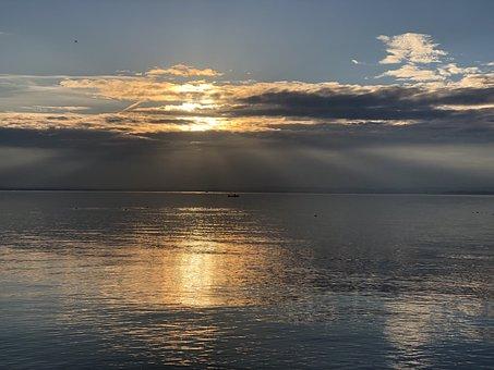 Freedom, Lake, Nature, Water, Landscape, Peace, Calm