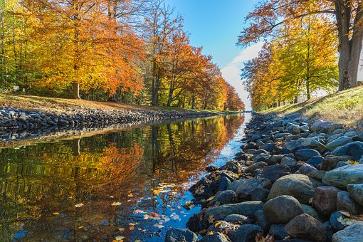River, Lake, Water, Nature, Forest, Landscape
