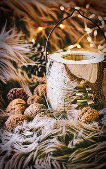 Fur, Lights, Pine Cones, Christmas, Mood, Winter