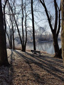 Bench, Winter, Frost, Nature, Park, Cold, Wintry