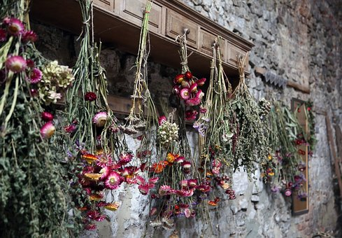 Dried Flowers, Grange, Romantic, Nature