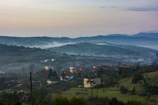 Landscape, Fog, Nature, Forest, Open, Haze, Trees