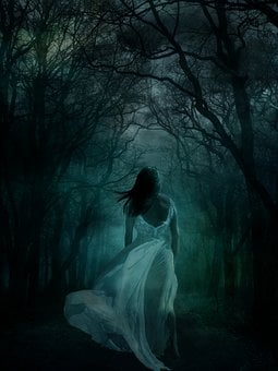 Woman, Female, Girl, White Dress, Wood, Forest