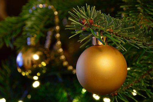 Christmas Images, Christmas, Fir Tree