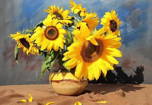 Flowers, Flora, Bouquet, Still Life, Sunflower, Yellow