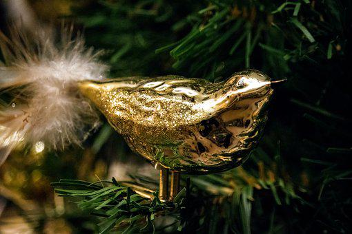 Christmas, Bird, Gold, Decoration, Christmas Decoration