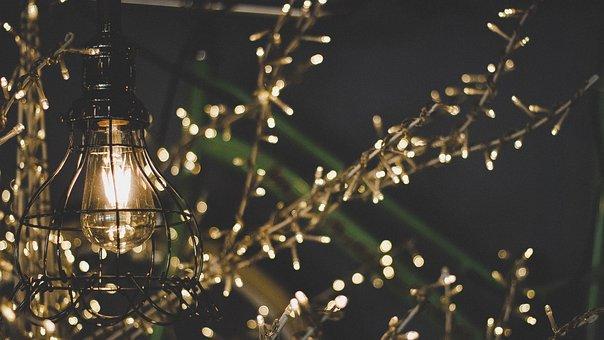 Light, Christmas, Restaurant, Vintage, Christmas Tree