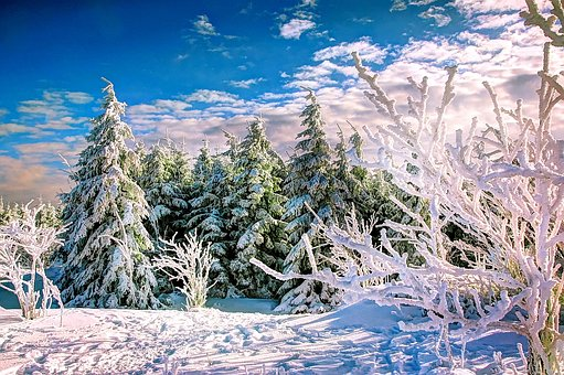 Resin, Winter, Ice, Snow, Wintry, Cold, Landscape