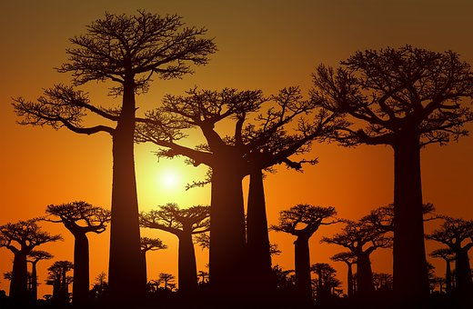 Sunset, Sunrise, Dusk, Dawn, Landscape, Nature, Sky