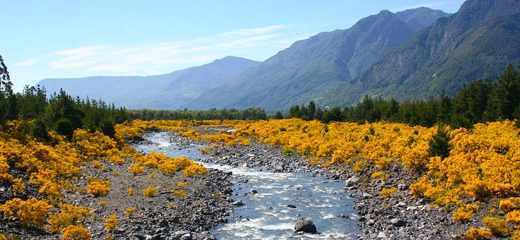 River, Brook, Landscape, Nature, Holiday, Pond, View