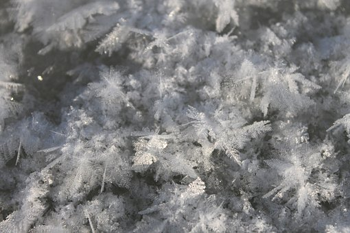 Snow, Winter, Ice, Cold, Snowflake, Snowflakes, Frost