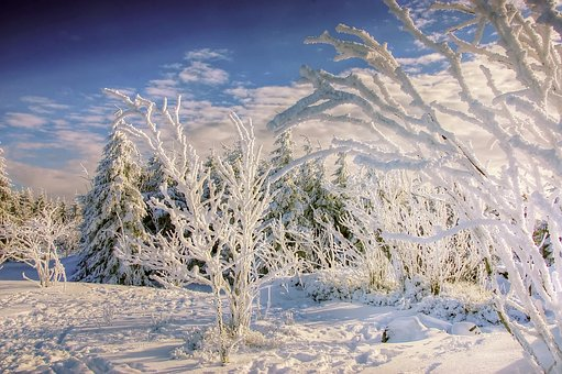 Winter, Resin, Snow, Wintry, Cold, Landscape, Nature