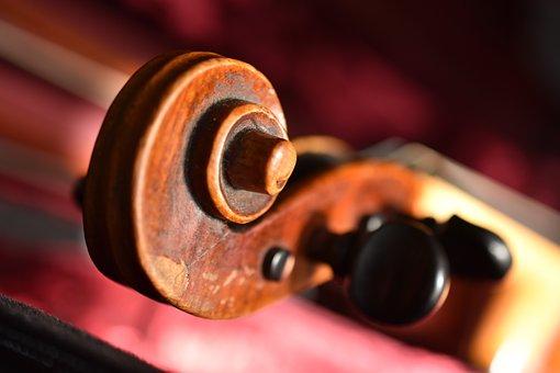Violin, Snail, Violin Worm, Wood, Brown