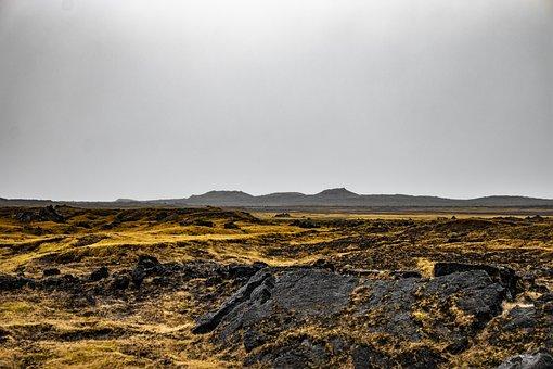 Iceland, Moss, Nature, Landscape, Grey, Stones, Rock