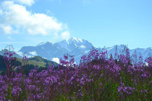 Lessaisies, Alps, Beaufort