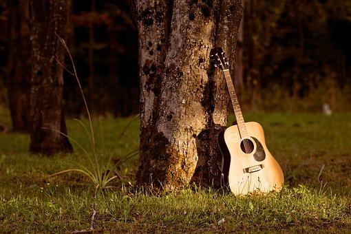 Music, Nature, Tree
