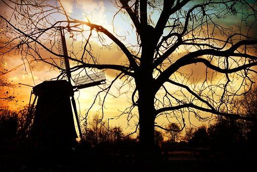 Windmill, Mill, Dutch, Tree, Sunset, Silhouette, Rural