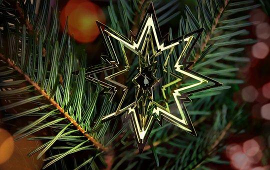 Star, Poinsettia, Christmas, Decoration, Advent