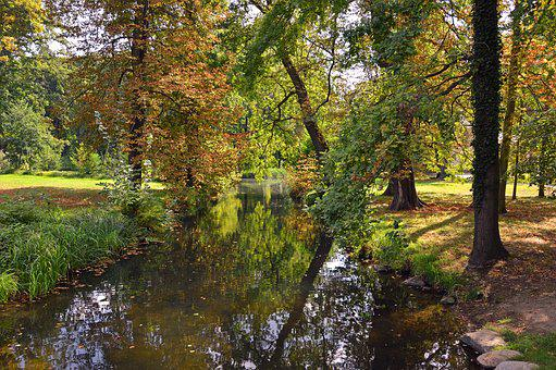 Landscape, Nature, Trees, Park, River, Bach, Water