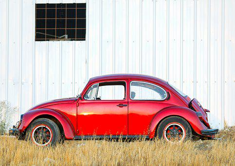 Car, Bug, Red, Insect, Beetle, Nature, Animal, Ladybird