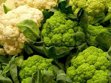Cabbage, Vegetables, Sano, Food, Green, Alimentari