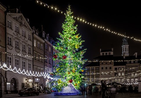 Christmas Tree, Christmas, City, The Market, Warsaw