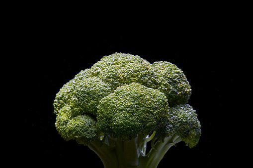 Broccoli, Vegetable, Green, Healthy, Food, Fresh