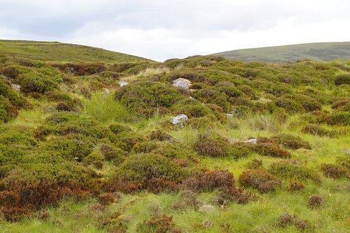Highlands And Islands, Hill, Landscape, Nature